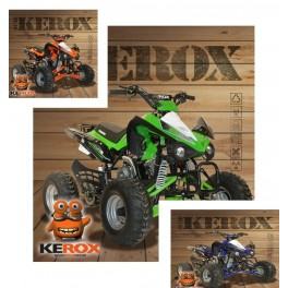 http://gmrmotoracing.com/4468-thickbox_default/quad-enfants-kerox-speedbird-110cc.jpg
