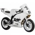 Moto mini GP 150cc KAYO